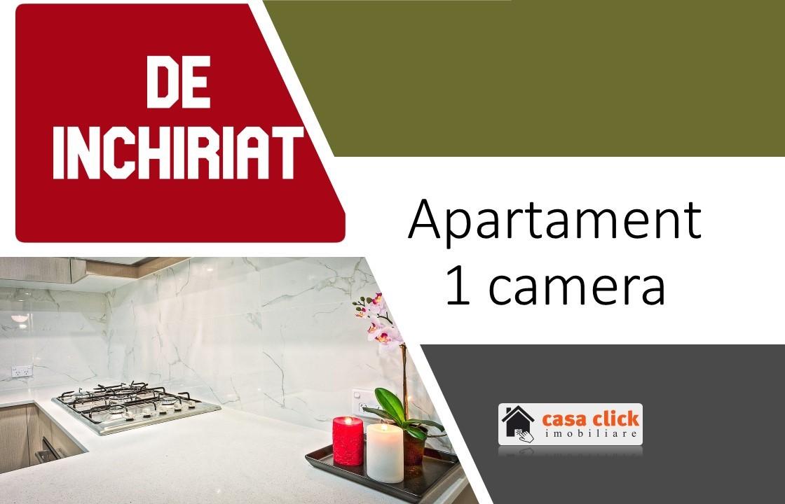 Apartament 1 camera deosebit, spatios, bloc nou